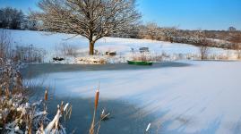 Der Schuppen am Teich